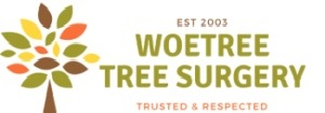 Woetree Tree Surgery Services
